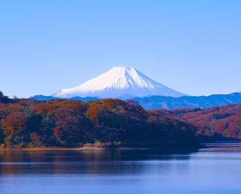 Xin visa Nhật Bản mất bao lâu?